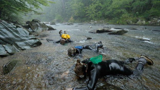 12-abrams-creek
