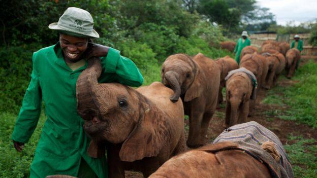 18-elephant-bond-caregivers-670