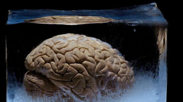 Mróz w głowie