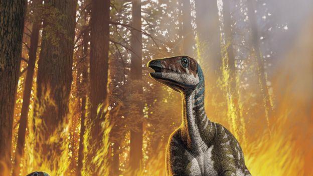 Wild_fire-dinosaurs_fi_opt