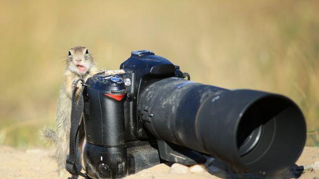 Jak zrobić dobre zdjęcie?