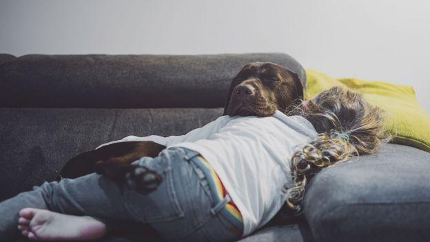 Psy są naprawdę bliskie ludziom. A pod względem wnętrza... jesteśmy kuzynami