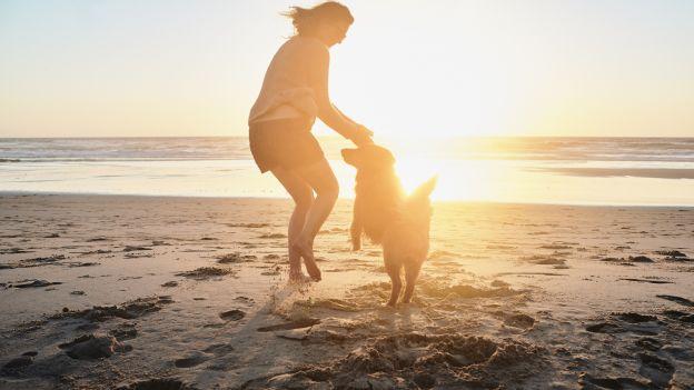 Możesz żyć dłużej - nawet o 25% - dzięki swojemu psu
