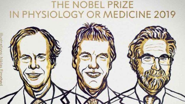 Nobel 2019 z medycyny