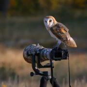 Za kulisami konkursu Fotograf Roku ZPFP