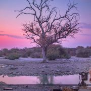 BTS-Lake_Botswana