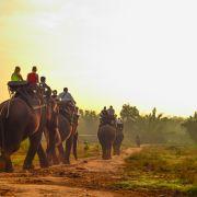 Ciemna strona tajskiej turystyki