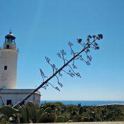 Faro de la Mola - najbardziej odległy punkt