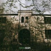 #4 Forest Escape, Wola Zaradzyńska. Las pełen tajemnic