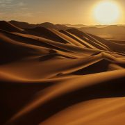 Złota pustynia