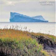Grenlandia - kolorowy odcień bieli