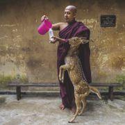 Sri Lanka to wyspa zranionych serc