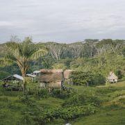 Współczesna Amazonia