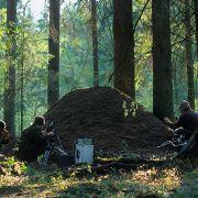 Saga o Puszczy Białowieskiej