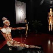 2. Podróż do wnętrza ciała