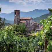 Ceserana to jedno z wielu toskańskich miasteczek położonych na porośniętych winoroślą wzgórzach