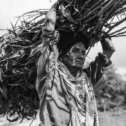 Kobieta znosi drewno z okolicznych lasów.