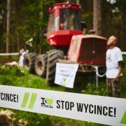 Blokada wycinki w Puszczy Białowieskiej