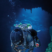 W cenocie The Pit, znanym miejscu nurkowym na półwyspie Jukatan w Meksyku.