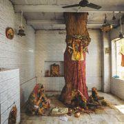 MIODLA INDYJSKA - Waranasi, Indie