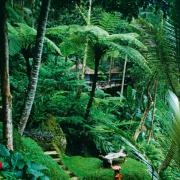 Bali słynie  z niesamowitych hoteli, jak Begawan Giri  w Ubud.