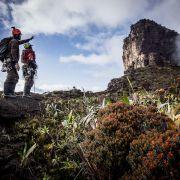 Z górnego plato oglądamy południową ścianę szczytowej turni Tramen Tepui.
