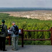 Ze wzgórza Czubatka  w Kluczach  (382 m n.p.m.)  widać Błędowską w całej okazałości.