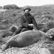 Arthur Sawyer i szczeniaczek słonia morskiego