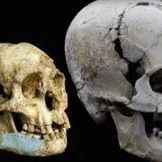 Porównanie czaszek na podstawie znalezisk. Człowiek z Luzon (po lewej) i Homo sapiens (z prawej)