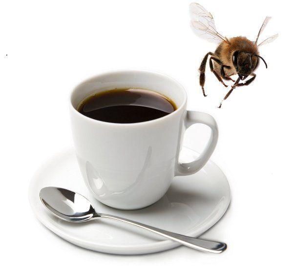 pszczoly_i_kofeina