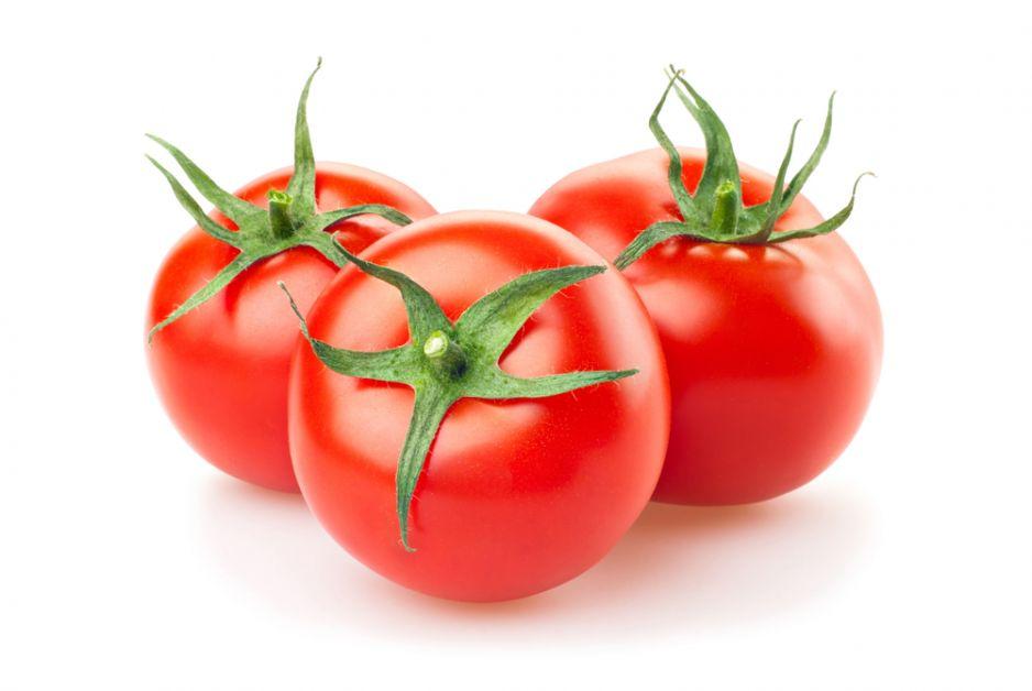 Co wspólnego ma dinozaur z pomidorem? O wiele więcej, niż mogłoby się wydawać!