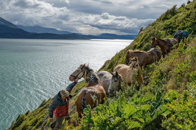 13-coaxing-horses-along-steep-cliffs-670