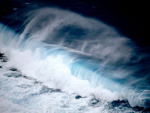 pallau-wave_1135_600x450
