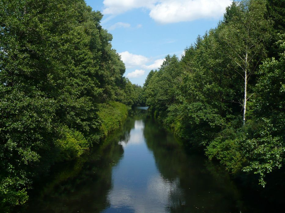 Zobacz wodne ogrody Kanału Augustowskiego [Polskie zakątki cz. 2]