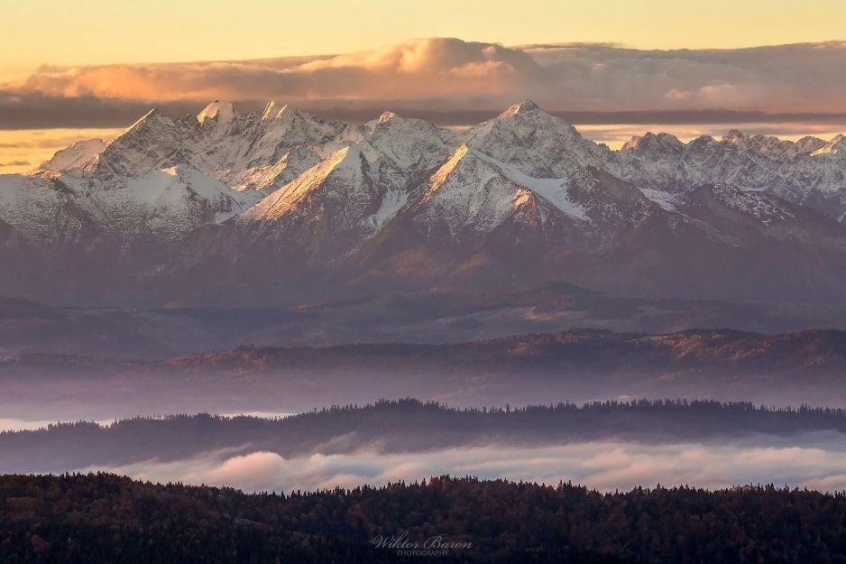 Widok z Gorców na Tatry