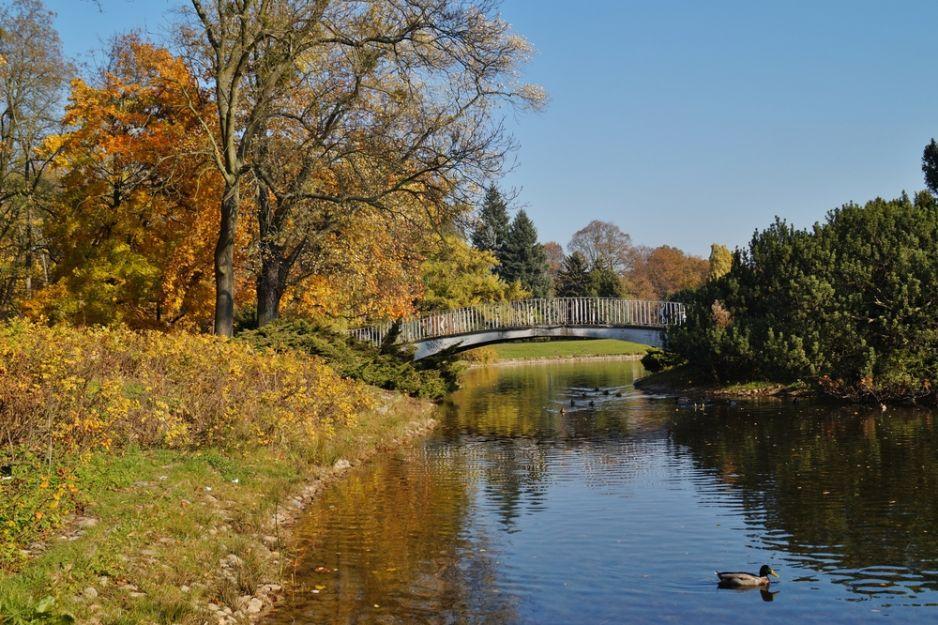 Dawne rzeki Łodzi