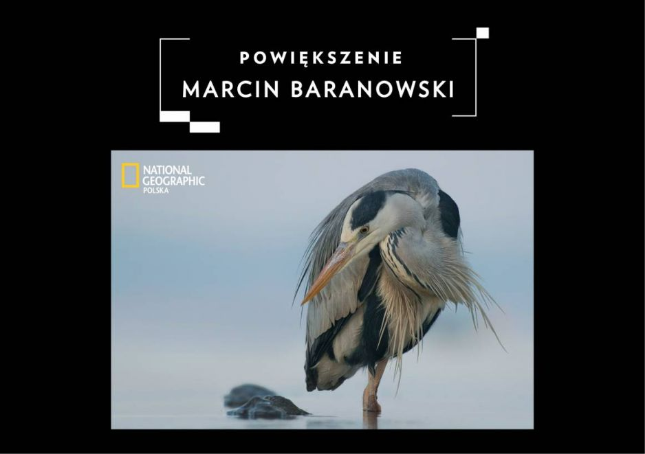 POWIĘKSZENIE: Marcin Baranowski