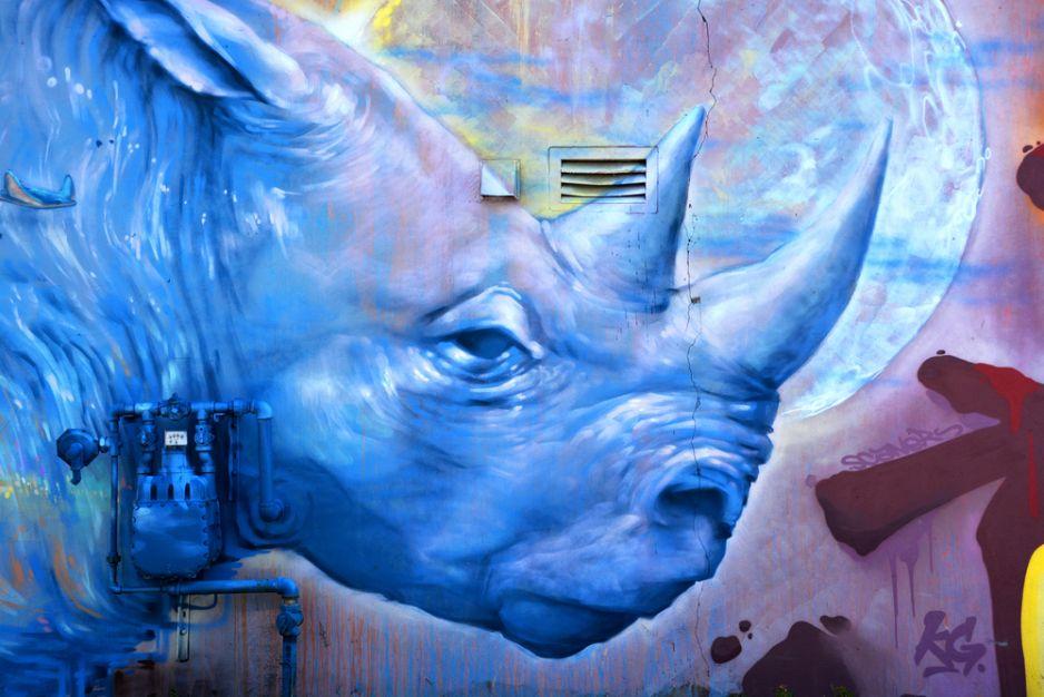 Graffiti przedstawiające nosorożca w Montrealu