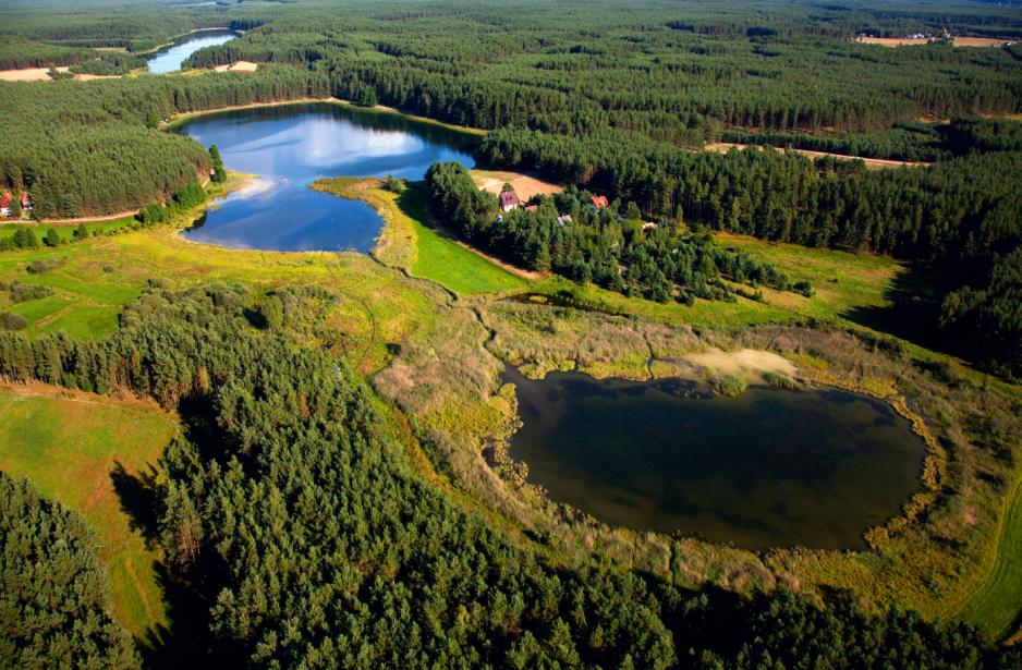 Warto wybrać się Szlakiem Pięciu Jezior i zobaczyć m.in. Jezioro Kramsko Małe.