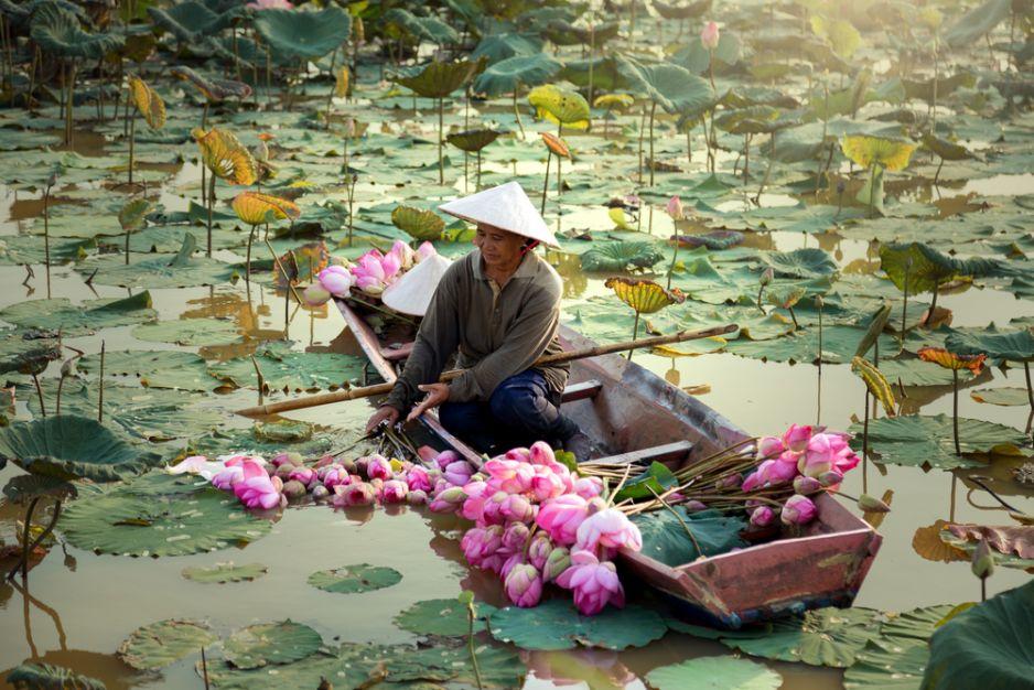 Mój Wietnam
