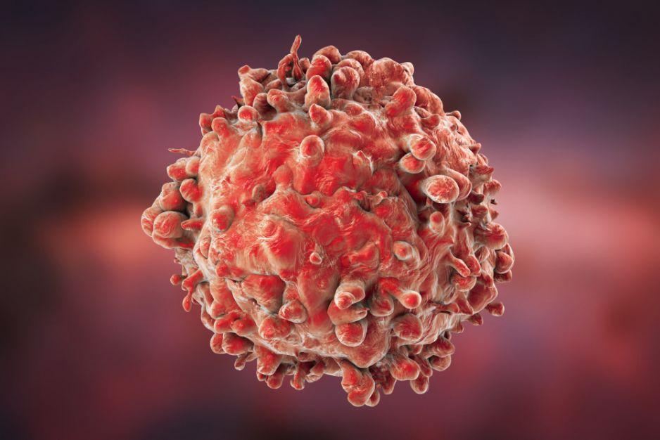 Komórka krwi chorej na białaczkę