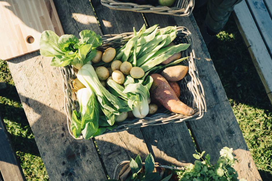 WHO wie, co powinniśmy jeść, żeby żyć dłużej i nie chorować. Tylko dwie diety europejskie to gwarantują