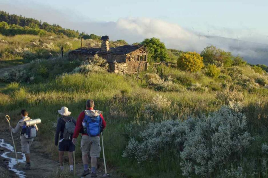 Szlak Camino de Santiago w 5 krokach