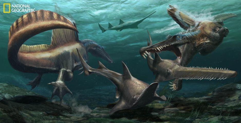 Dwa Spinozaury polują na prehistoryczne ryby piaskowe Onchopristis w wodach systemu rzecznego pokrywającego tereny obecnego Maroku około 97 milionów lat temu. Odkryte skamieliny ogona dinozaura pokazują, że dobrze nadawał się do pływania – co wzmacnia prz