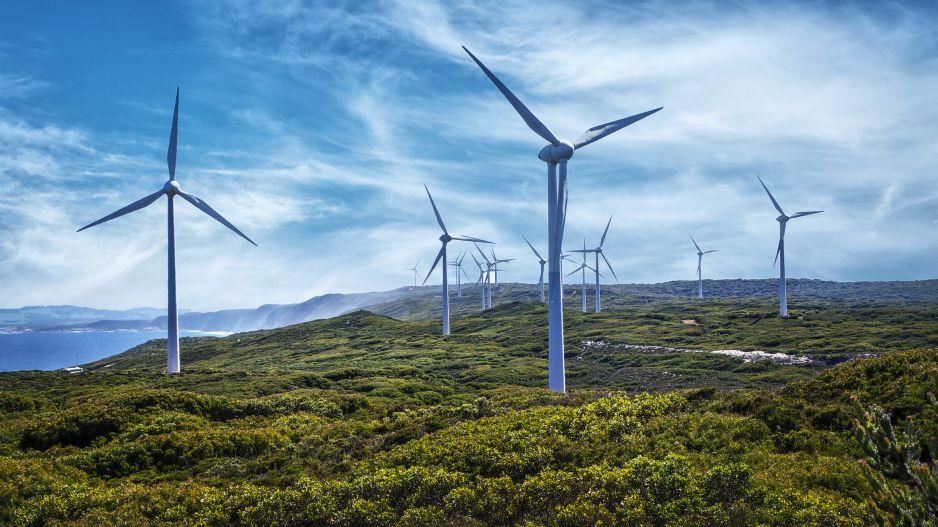 Zdaniem niektórych turbiny wiatrowe powodują szkody dla zdrowia ludzi (fot. Getty Images)