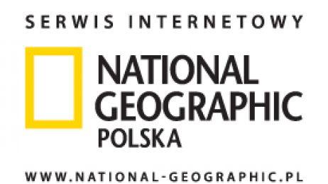 SerwisInternetowy_NGM_www_RGB_72dpi