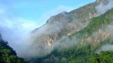 Park Narodowy Madidi w Boliwii to prawdopodobniej najbardziej zróżnicowane biologicznie miejsce na Ziemi - orzekli naukowcy z Wildlife Conservation Society
