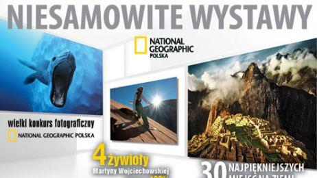 3_WYSTAWY_500x300INT