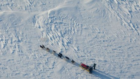02_sled_team_qucikly_passes_shannon_sound_670