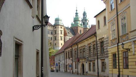 Odwiedź Damę z gronostajem na Wawelu